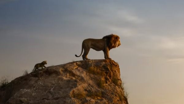 מתוך הסרט מלך האריות