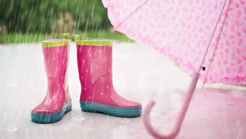 התחזית גשום