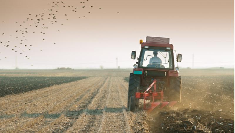 חקלאים