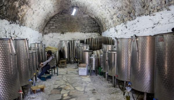 """בקנדהלא רוצים יין מיו""""ש. יקב ישראלי"""