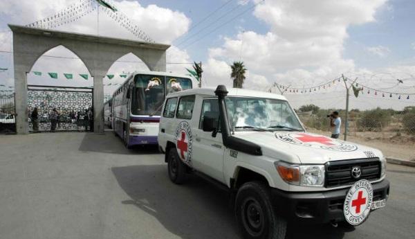 רוצים לפגוש את החטופים הישראלים. רכבים של הצלב האדום