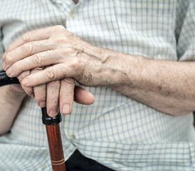 רבים מהניצולים לא יודעים איך לממש את הזכויות שמגיעות להם | אילוסטרציה צילום: shutterstock