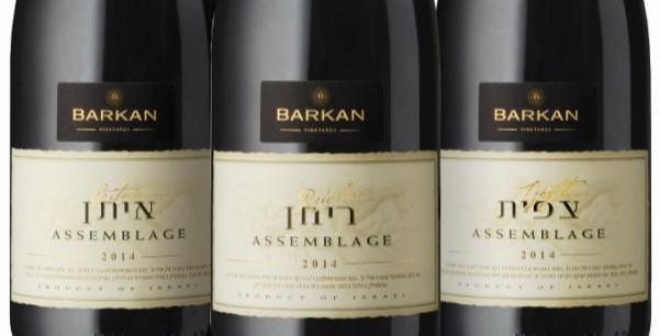 יינות ברקן