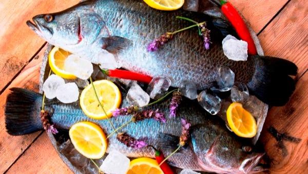דג בורמנדי