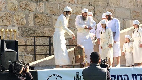 הדגמה של עבודת הכהנים בבית המקדש