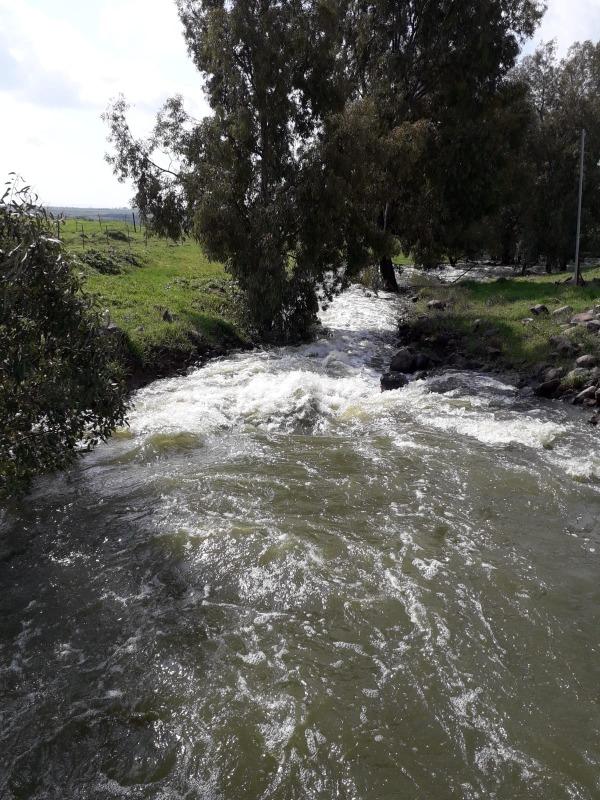 גלישת מאגר בני ישראל, דרום רמת הגולן