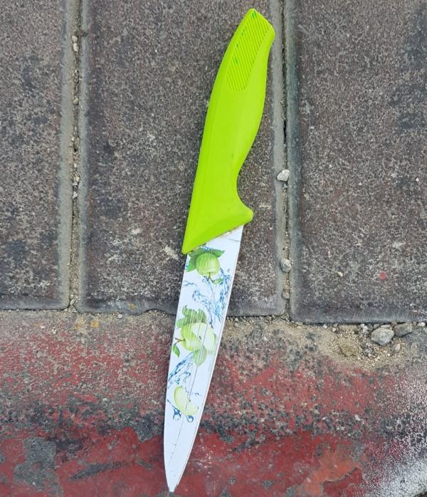 הסכין ששימשה לניסיון הפיגוע