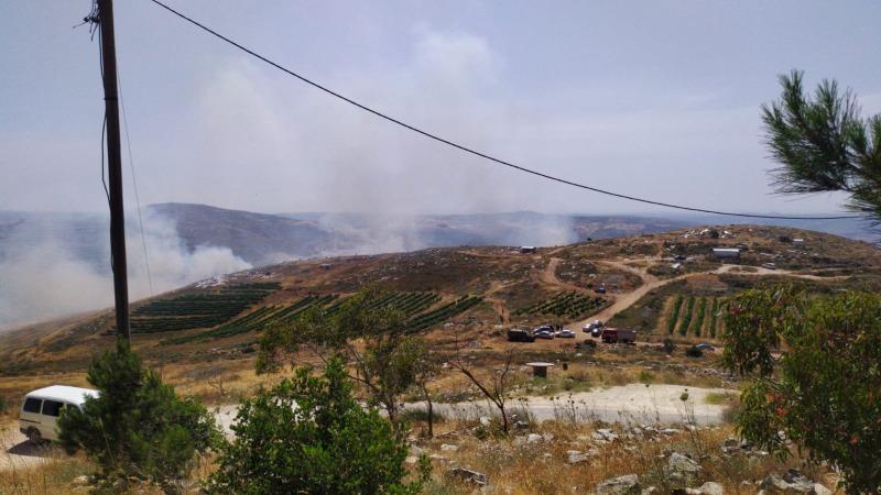 השרפה סמוך ליצהר