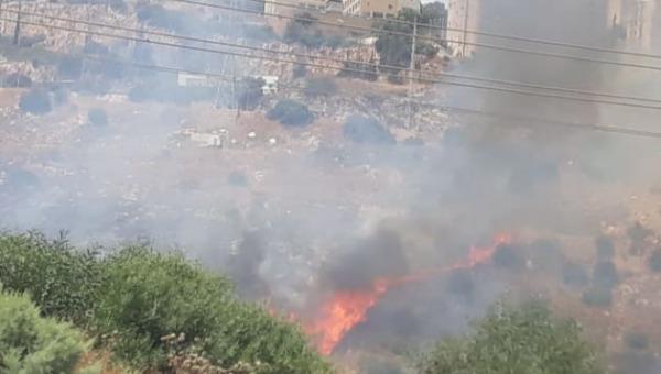 השרפה בחיפה