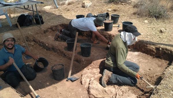 חופרים בסוסיא