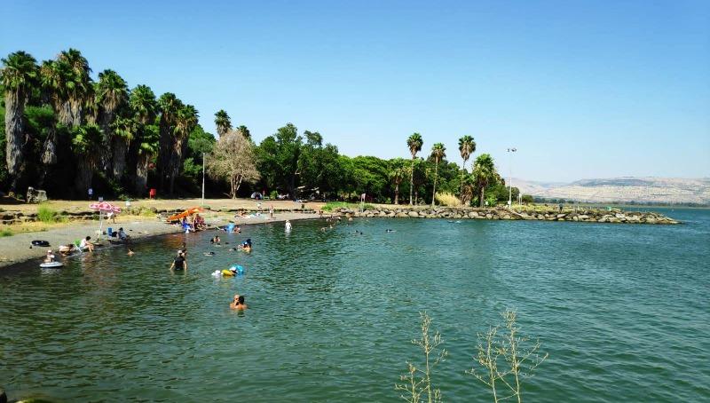 חוף אמנון בכנרת