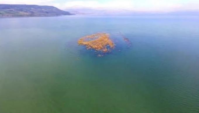 האי בכנרת נעלם