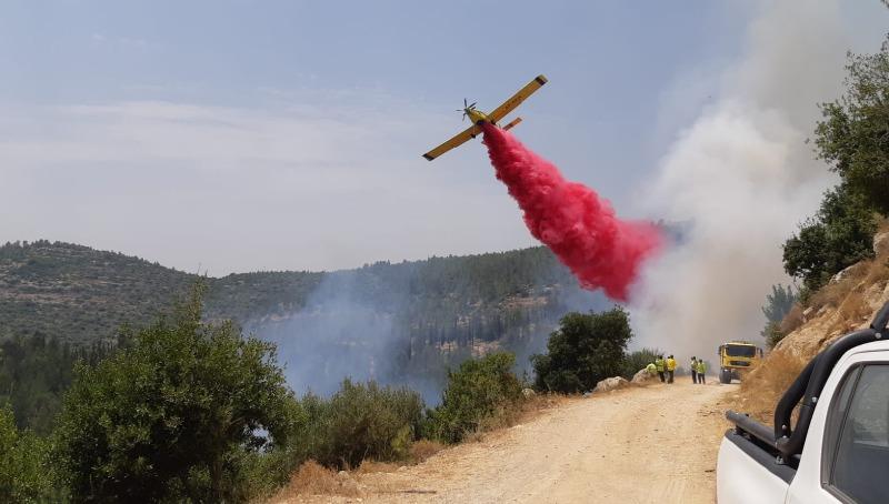השרפה ביער ירושלים