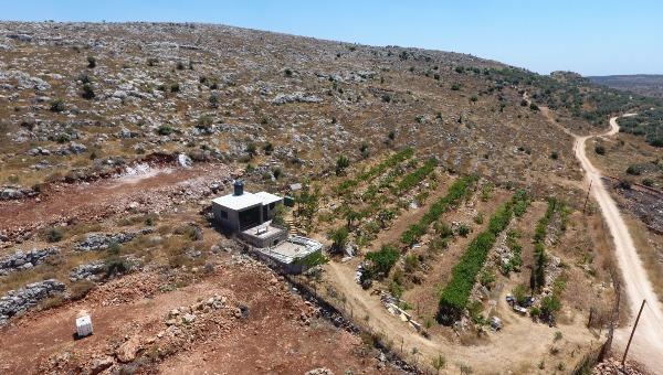 תיעוד ההשתלטות הפלסטינית
