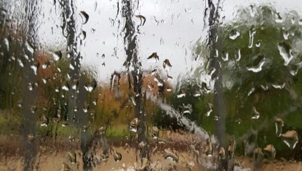 הגשם בדרך?