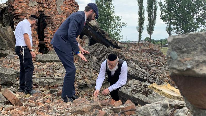 מזעזע: עצמות היהודים במחנות ההשמדה בפולין צפות אחרי הגשם