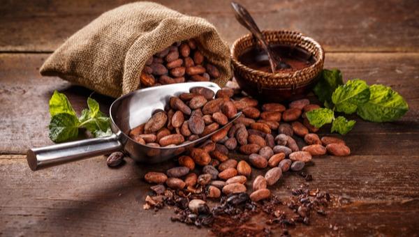 השוקולד - מזון האלים!