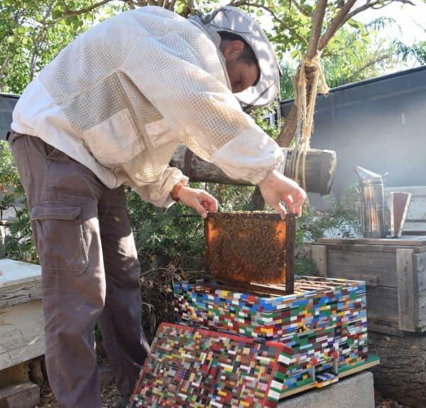 כוורת מלגו: 7,000 חלקי לגו שהפכו לבית הדבורים