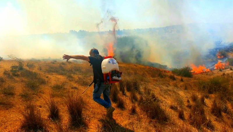 שריפות באשכול
