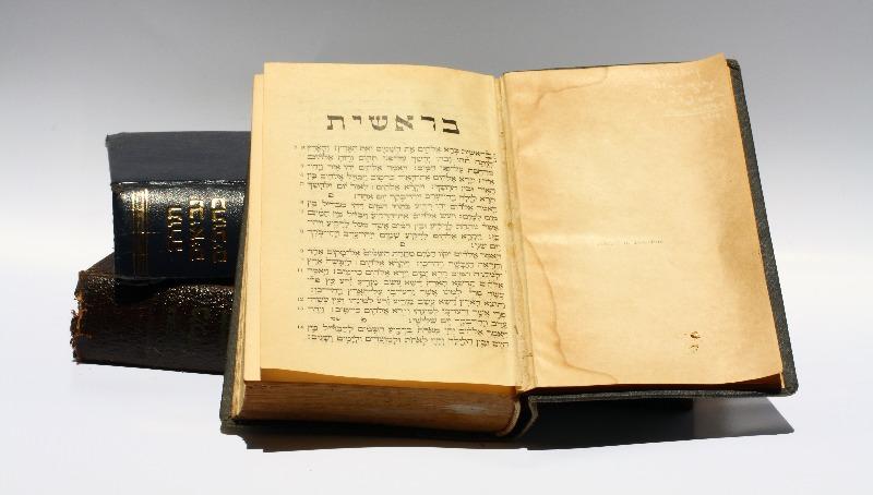 פרשת בראשית: וַיֹּאמֶר הַנָּחָשׁ אֶל הָאִשָּׁה לֹא מוֹת תְּמֻתוּן