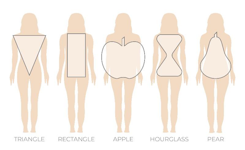 מבנה גוף