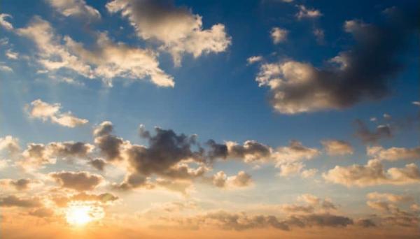 פרשת נח: על הברית ועל השותפות