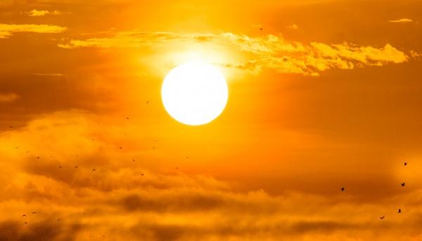 עומס חום כבד | תחזית מזג האוויר