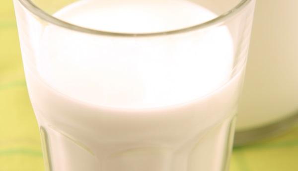 כוס חלב