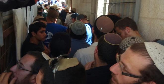 מאות עולים להר הבית