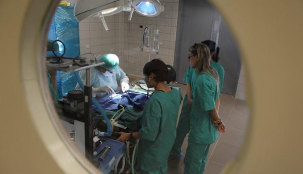 ניתוח. למצולמים אין קשר לכתבה