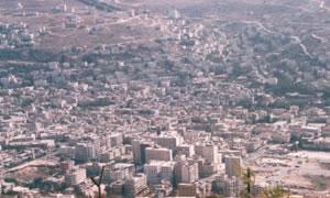 עמית אבידן, ויקיפדיה עברית צילום: עמית אבידן, ויקיפדיה עברית