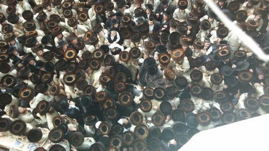 אליעזר סמט - סוכנות הידיעות 24 צילום: אליעזר סמט - סוכנות הידיעות 24