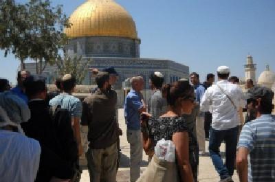ישראל מידד, מטה אירגוני המקדש