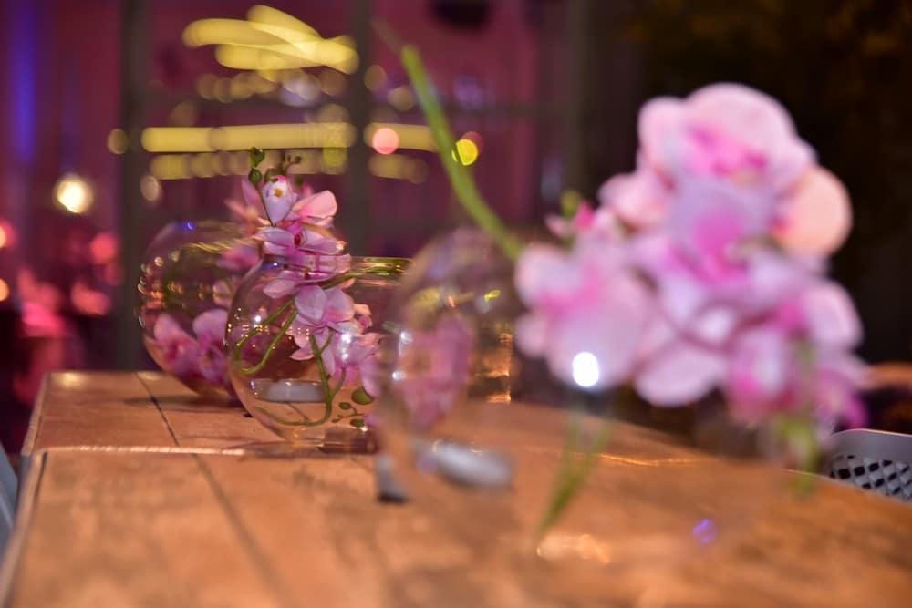 צבי גלעד אמנות הצילום